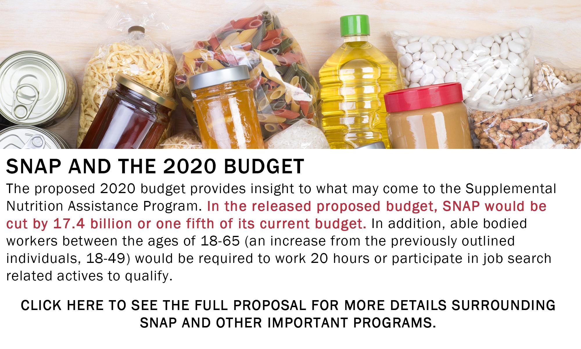 2020 SNAP Budget Info